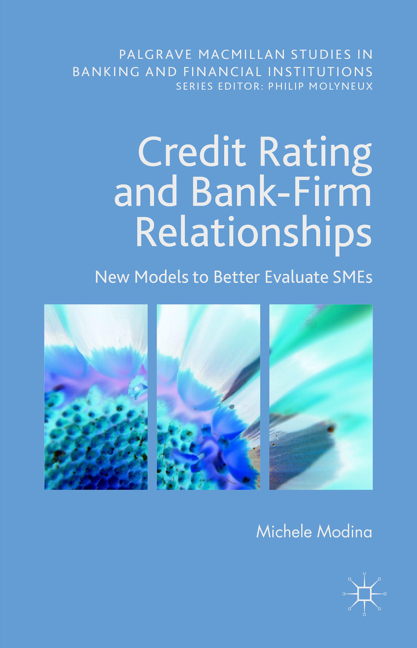 Credit Rating and Bank-Firm Relationships: New Models to Better Evaluate SMEs  by  Michele Modina