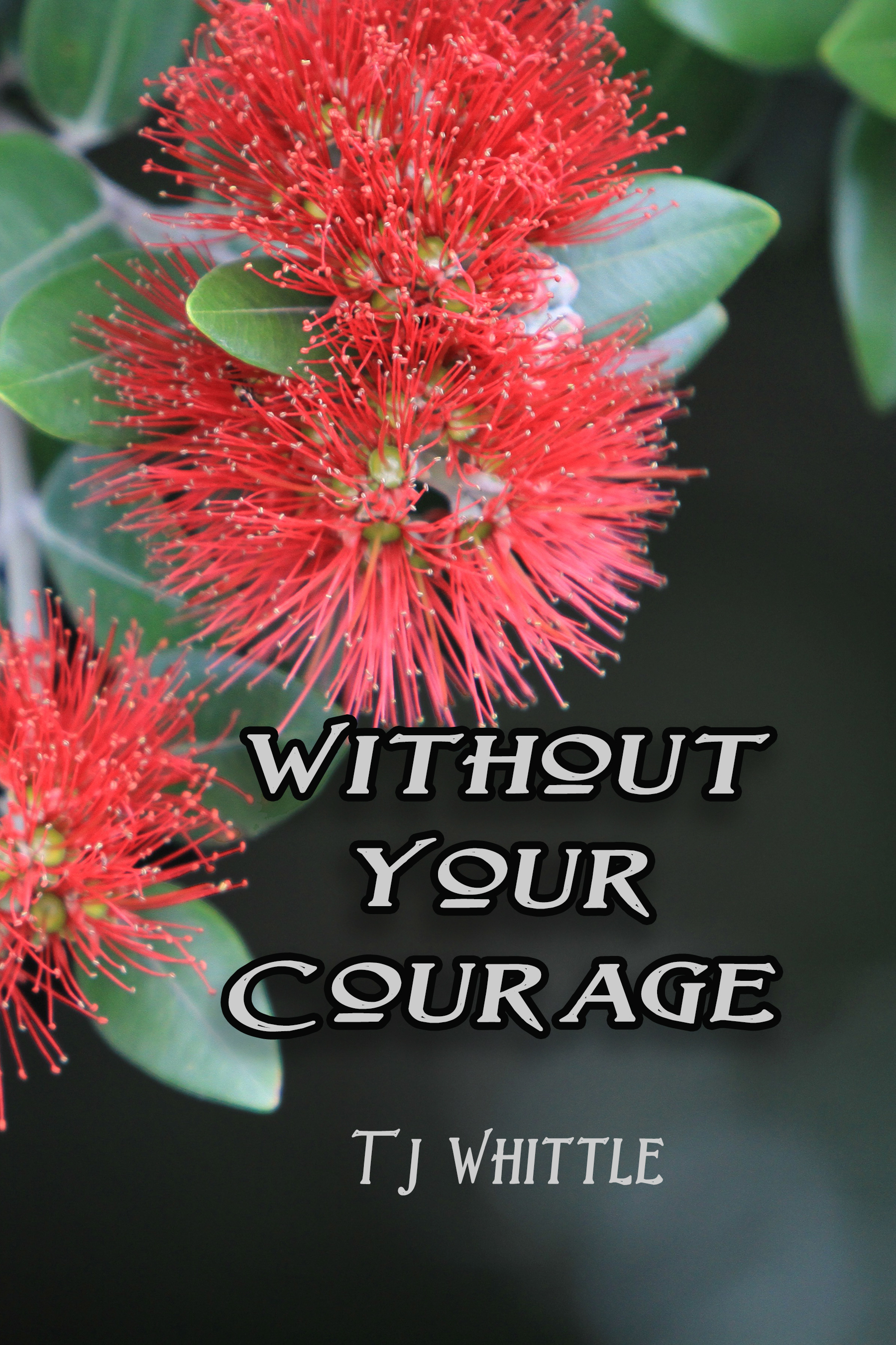 Without Your Courage T.J. Whittle