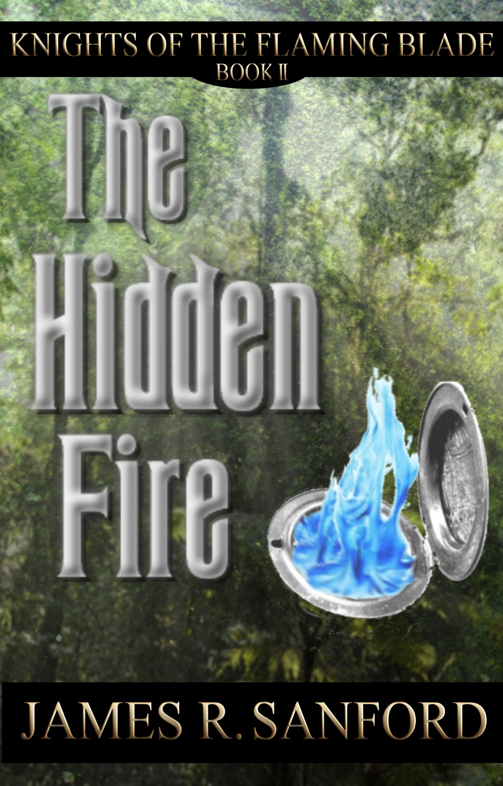 The Hidden Fire (Knights of the Flaming Blade #2)  by  James R. Sanford