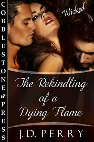 The Rekindling of a Dying Flame  by  J.D. Perry