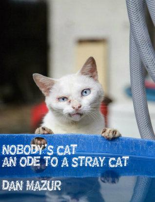 Nobodys Cat  by  Dan Mazur