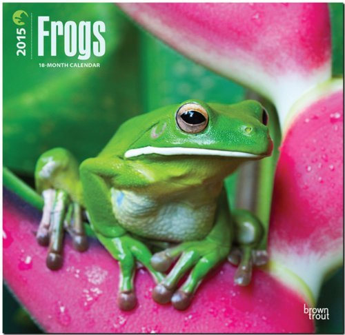 Frogs 2015 Square 12x12  by  NOT A BOOK