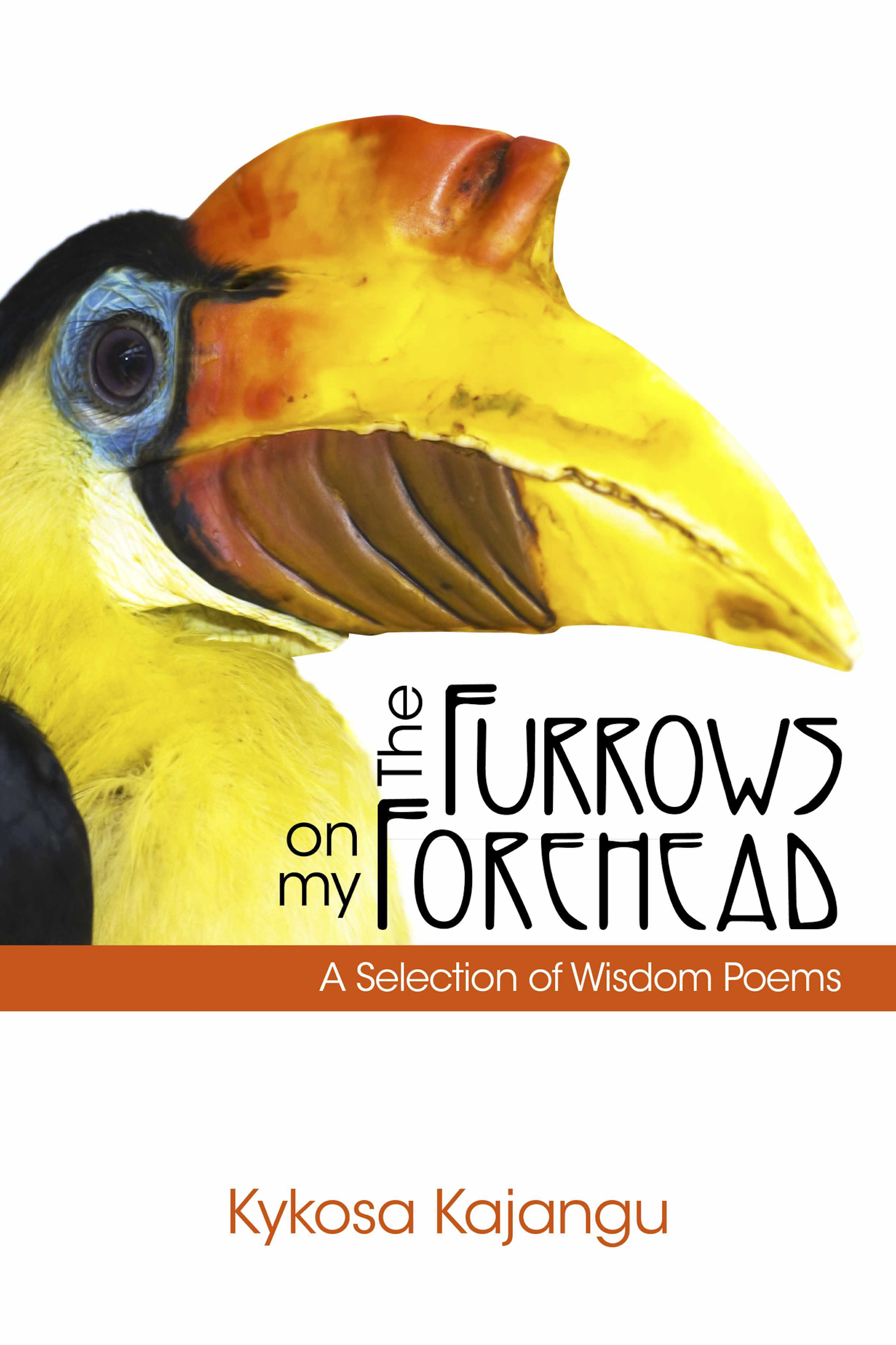 The Furrows On My Forehead-XLED: A Collection of Wisdom Poems Kyko-Tzu