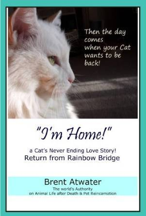 Im Home! a Cats Never Ending Love Story Brent Atwater