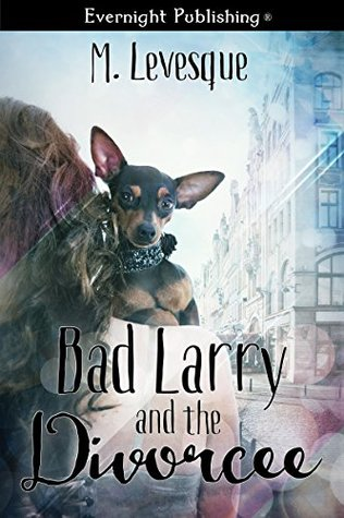 Bad Larry and the Divorcée  by  M. Levesque