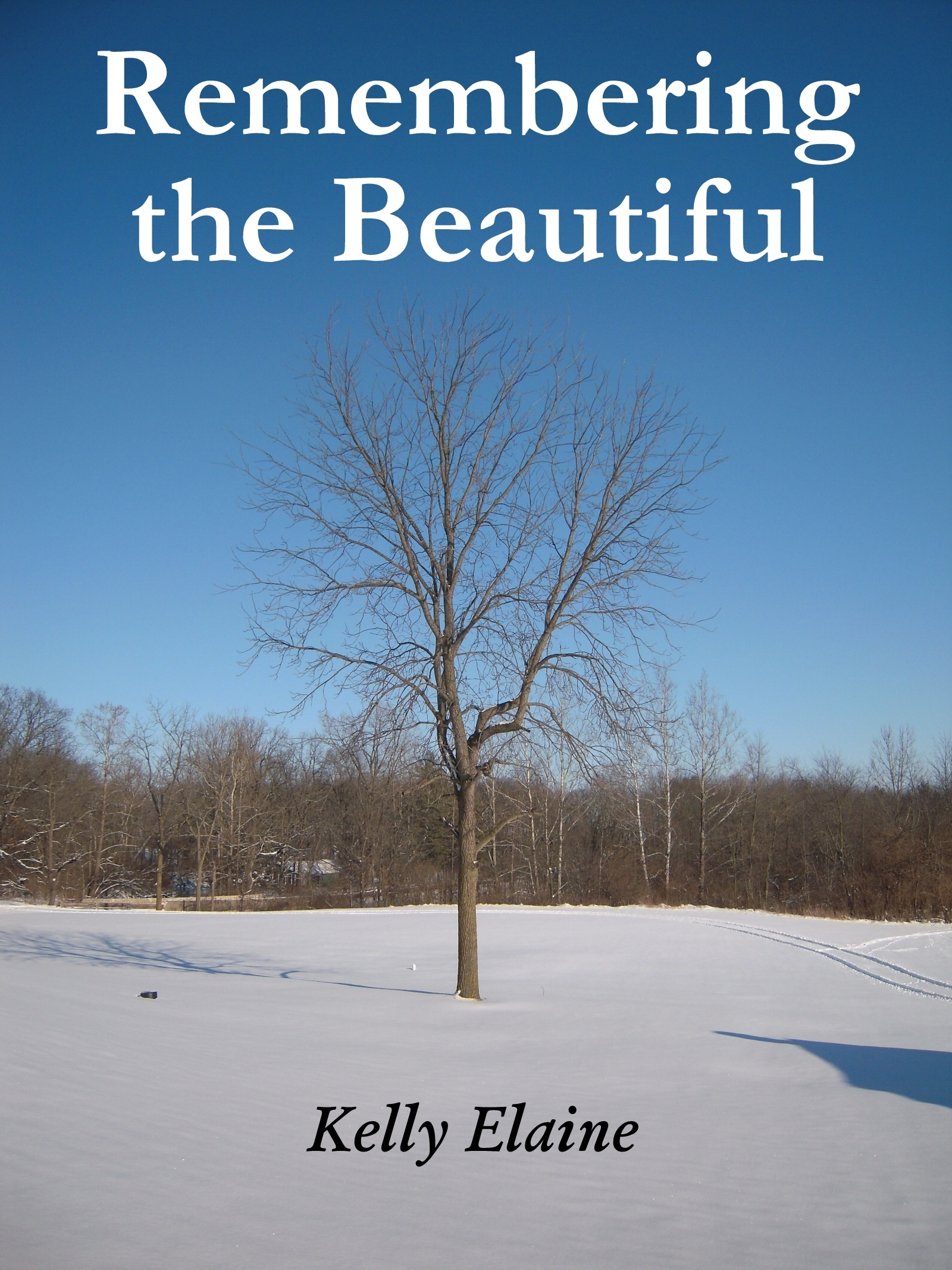 Remembering the Beautiful  by  Kelly Elaine