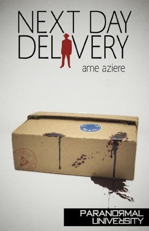 Next Day Delivery  by  Ame Aziere