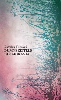 Dumnezeițele din Moravia  by  Kateřina Tučková