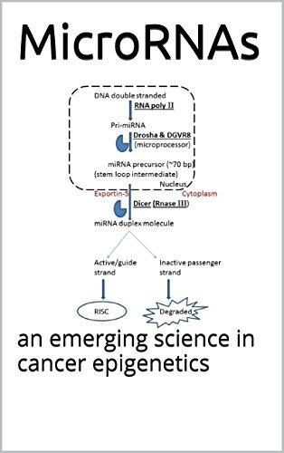 MicroRNAs: an emerging science in cancer epigenetics Various