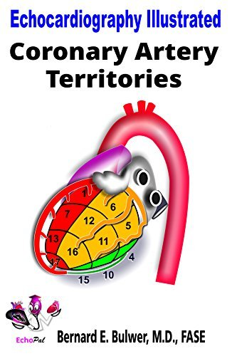 Coronary Artery Territories (Echocardiography Illustrated Book 4)  by  Bernard Bulwer