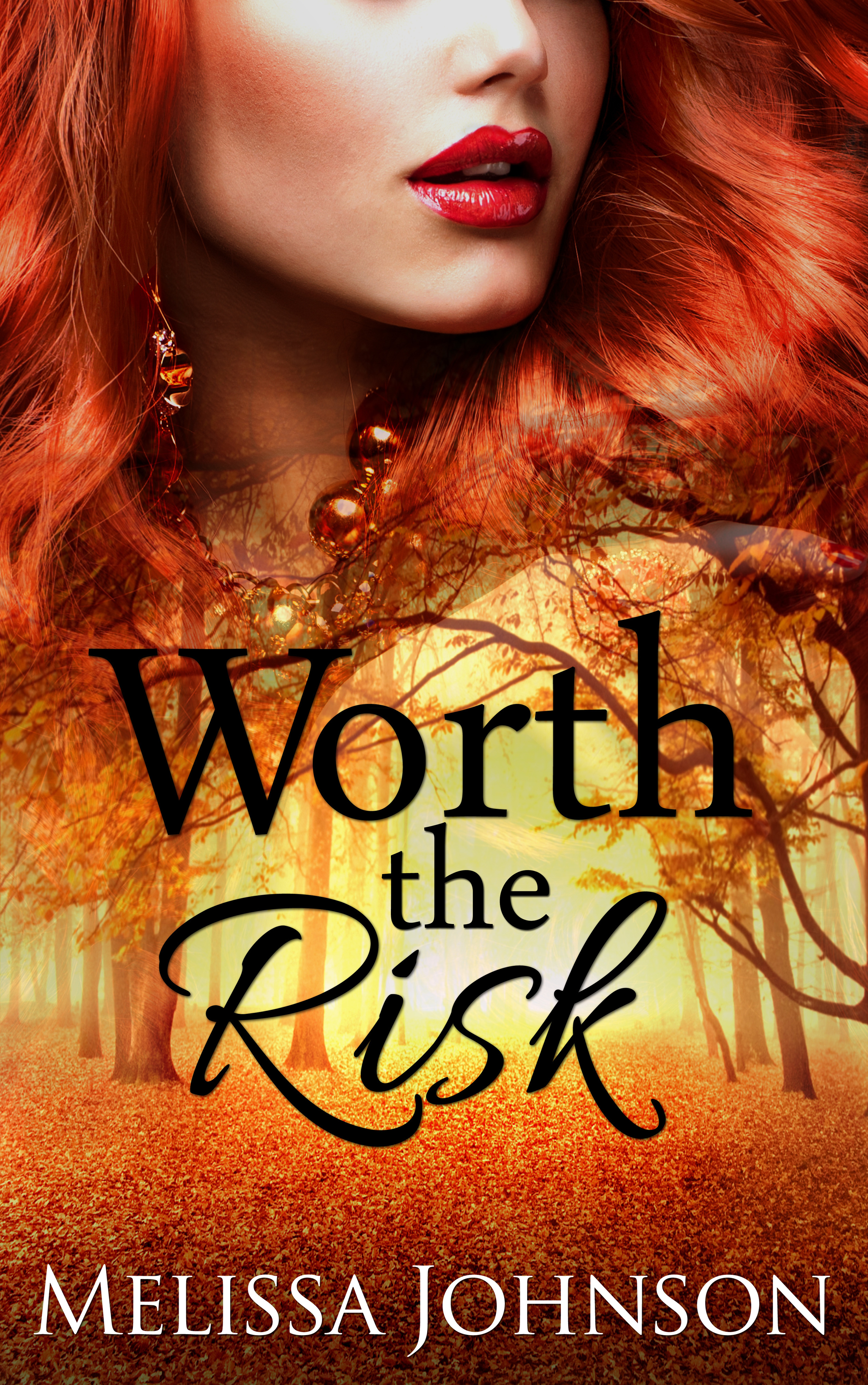 Worth the Risk  by  Melissa   Johnson