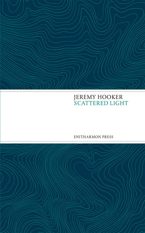 Scattered Light  by  Jeremy Hooker