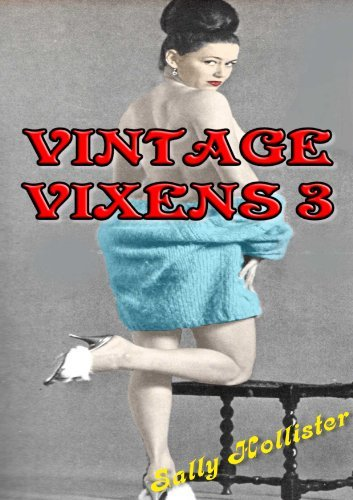 Vintage Vixens 3  by  Sally Hollister