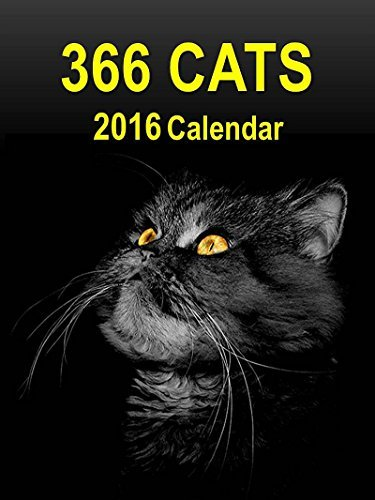 NOT A BOOK 366 Cats: 2016 Page-A-Day Calendar  by  NOT A BOOK