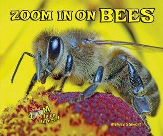 Zoom In on Bees Melissa Stewart