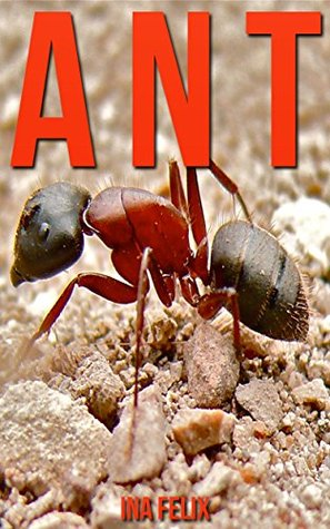 Ant: Children Book of Fun Facts & Amazing Photos on Animals in Nature - A Wonderful Ant Book for Kids aged 3-7  by  Ina Felix