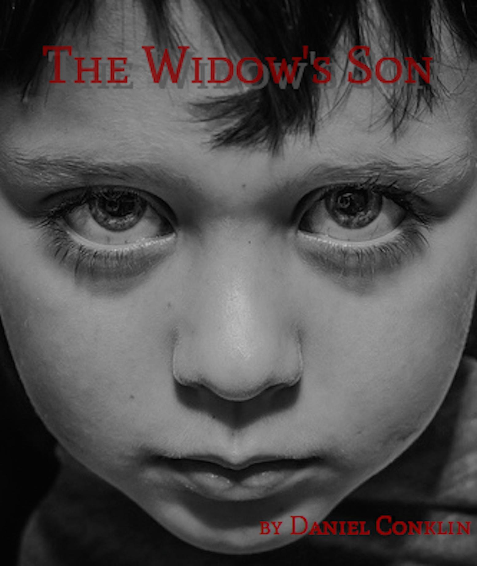 The Widows Son  by  Daniel D. Conklin
