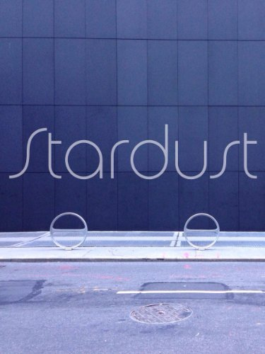 Stardust: Little Observations That Inspire Creativity and Productivity Wells Baum