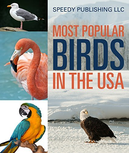 Most Popular Birds In The USA: Childrens Picture Book of Birds Speedy Publishing