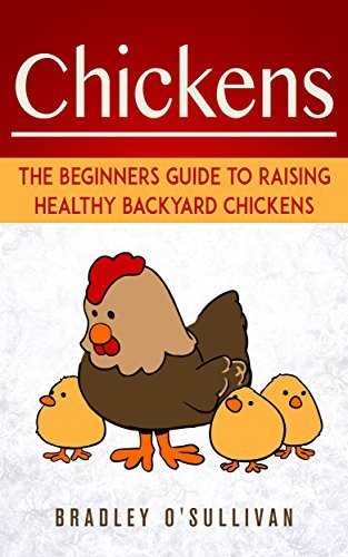 Chickens: The Beginers Guide To Raising Healthy Backyard Chickens  by  Bradley OSullivan