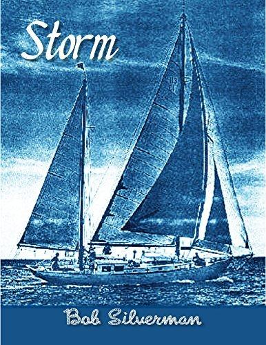 Storm Bob Silverman