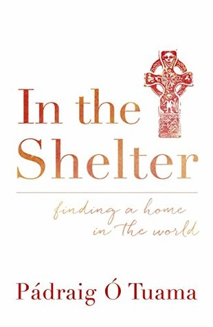 In the Shelter: Finding a Home in the World  by  Padraig O Tuama