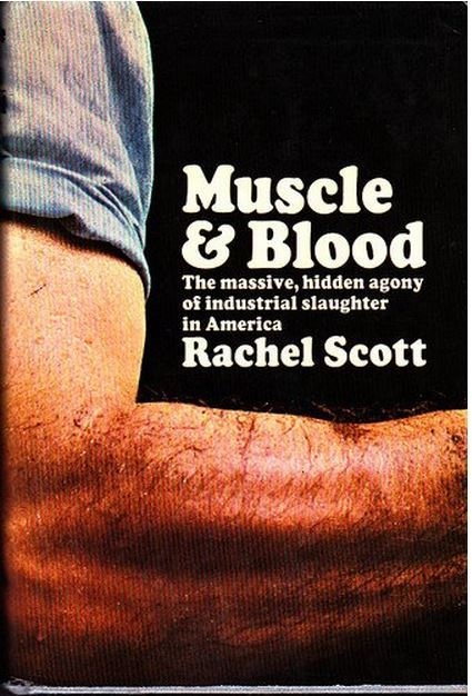 Muscle And Blood Rachel Scott