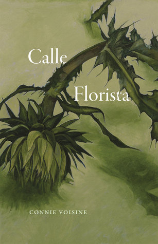 Calle Florista  by  Connie Voisine