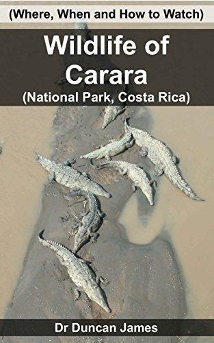 Wildlife of Carara (National Park, Costa Rica): Duncan James
