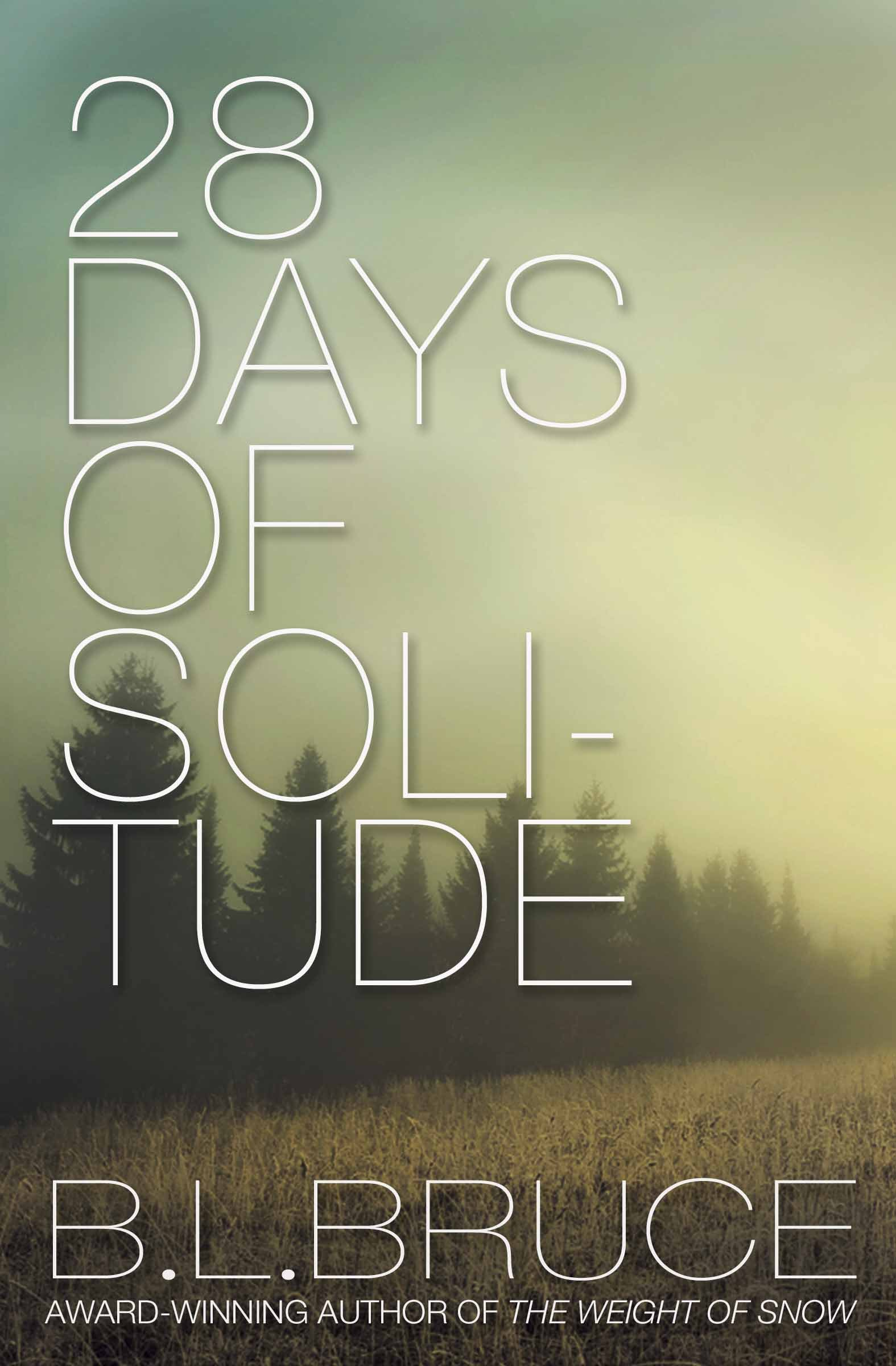 28 Days of Solitude  by  B. L. Bruce