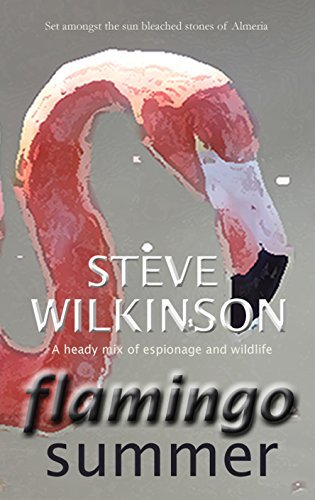 Flamingo Summer: Special Edition, Illustrated.  by  Steve Wilkinson