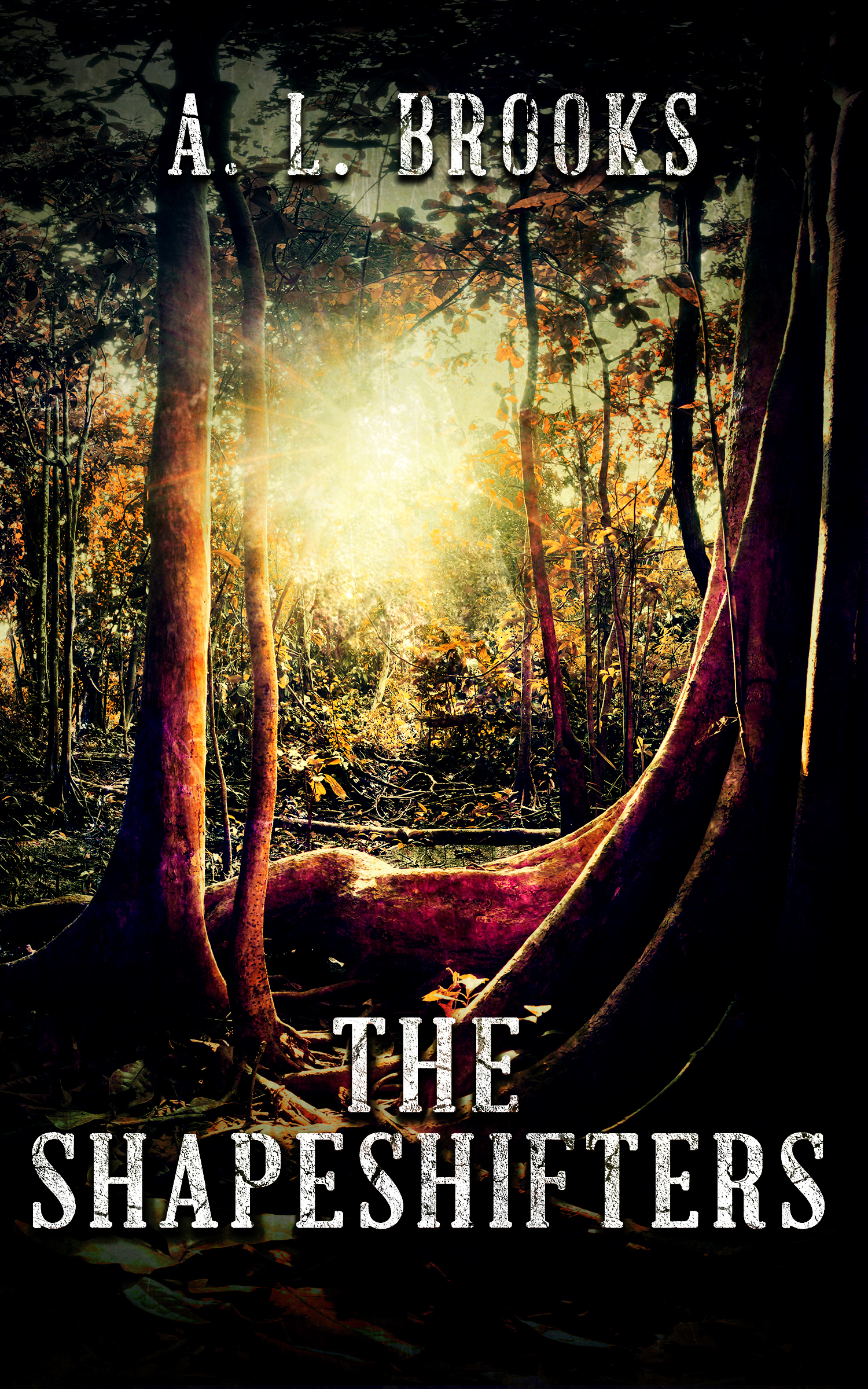The Shapeshifters  by  A.L. Brooks