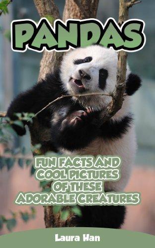 Pandas - Spannende Fakten und coole Bilder dieser niedlichen Kreaturen  by  Laura Han