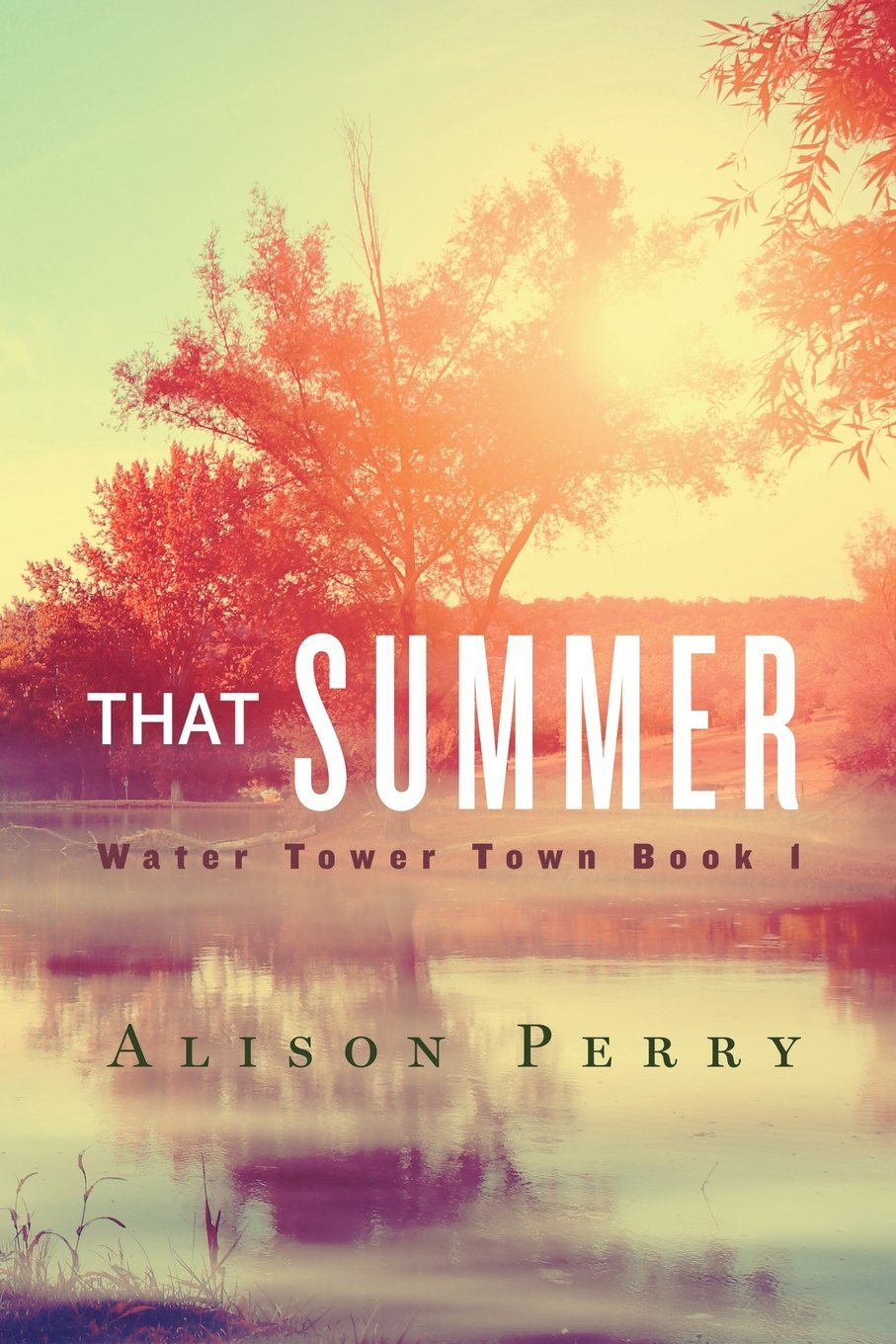 That Summer (Water Tower Town #1) Alison Perry
