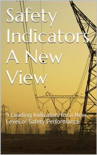Safety Indicators A New View: 5 Leading Indicators for a New Level of Safety Performance Paula Schwartz