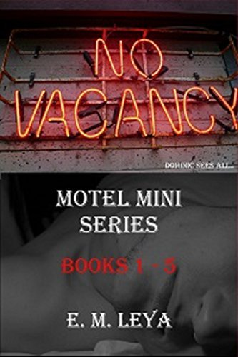 Motel Mini Box Set Volumes 1-5  by  E.M. Leya