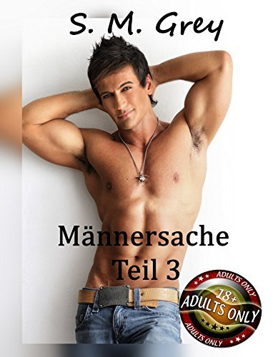 Männersache Band 3: Schwule Erotic-Storys mit heißen Boys S. M. Grey