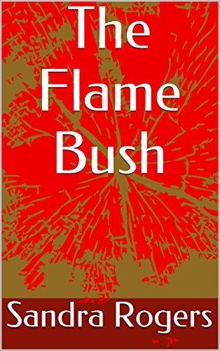 The Flame Bush  by  Sandra Rogers