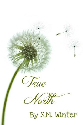 True North (Elemental Book 1) S.M. Winter