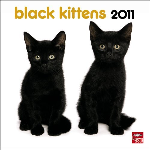 Black Kittens 2011 7X7 Mini Wall BrownTrout Publishers Inc