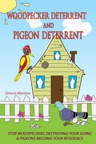 Woodpecker Deterrent - Pigeon Deterrent  by  Simon Marlow