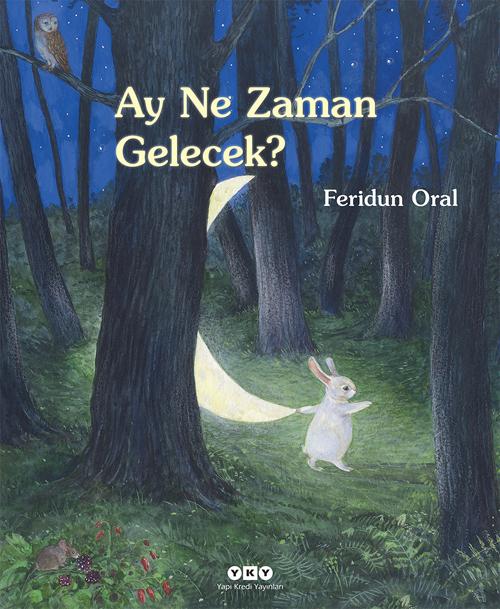 Ay Ne Zaman Gelecek?  by  Feridun Oral
