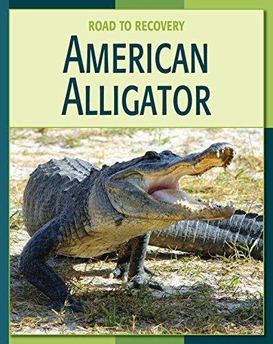 American Alligator (21st Century Skills Library: Road to Recovery)  by  Susan H. Gray