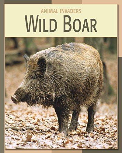 Wild Boar (21st Century Skills Library: Animal Invaders) Barbara A. Somervill