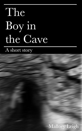 The Boy in the Cave Mallory Leigh