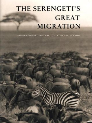 Serengetis Great Migration  by  Harvey Croze
