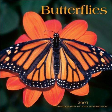 Butterflies  by  John Hendrickson