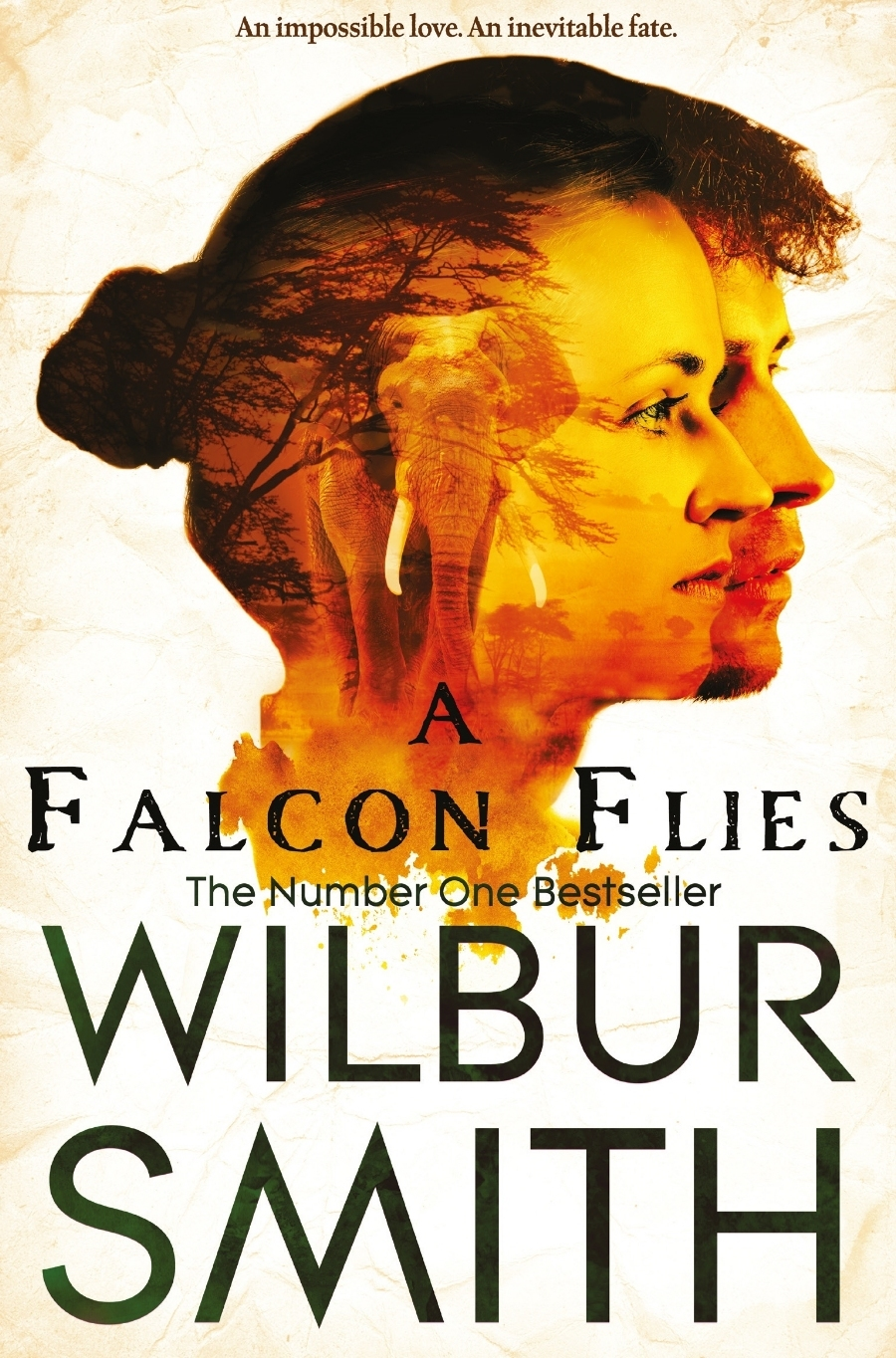A Falcon Files (Ballantyne, #1) Wilbur Smith