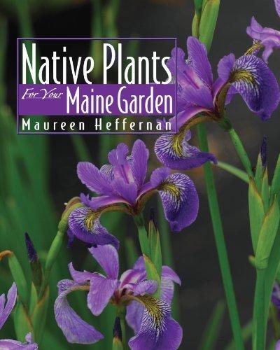Native Plants for Your Maine Garden  by  Maureen Heffernan
