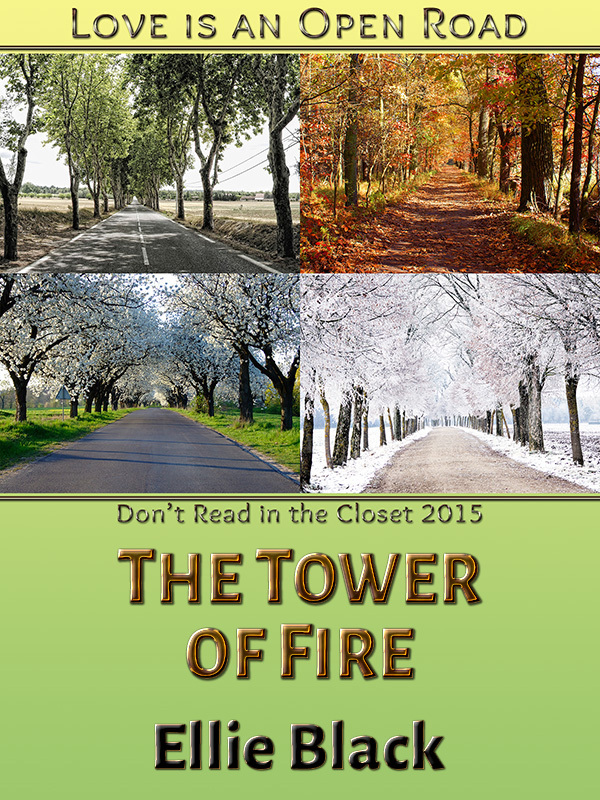 The Tower of Fire Ellie Black